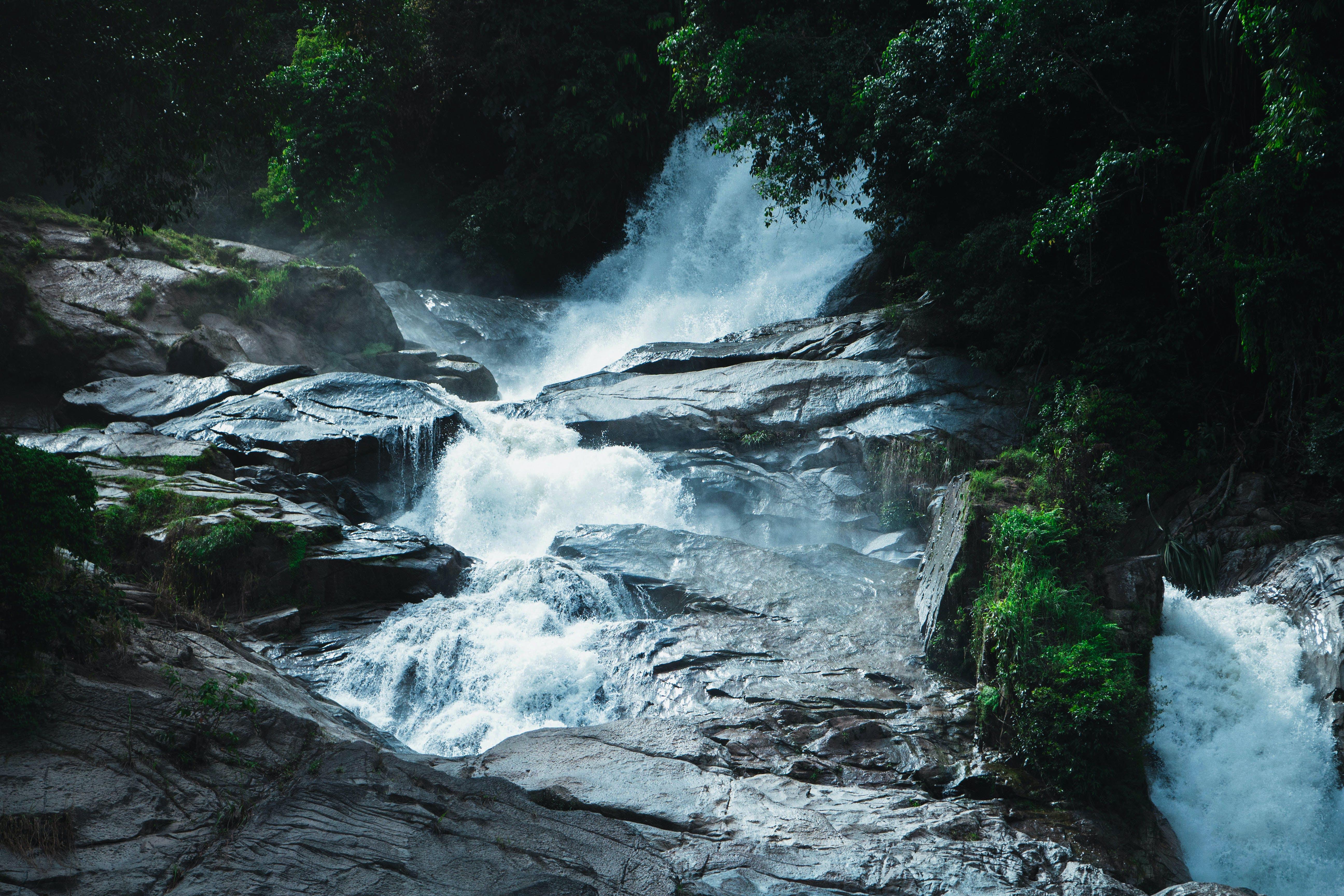 Základová fotografie zdarma na téma divočina, kameny, les, matka příroda