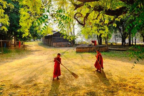 Free stock photo of monk