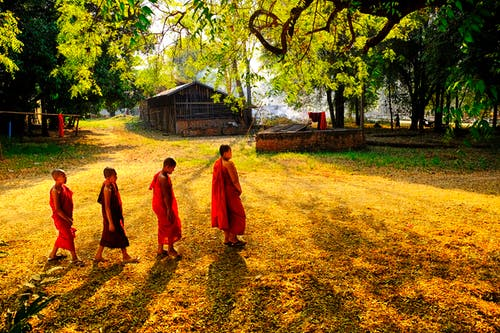 Free stock photo of monk, small_monk