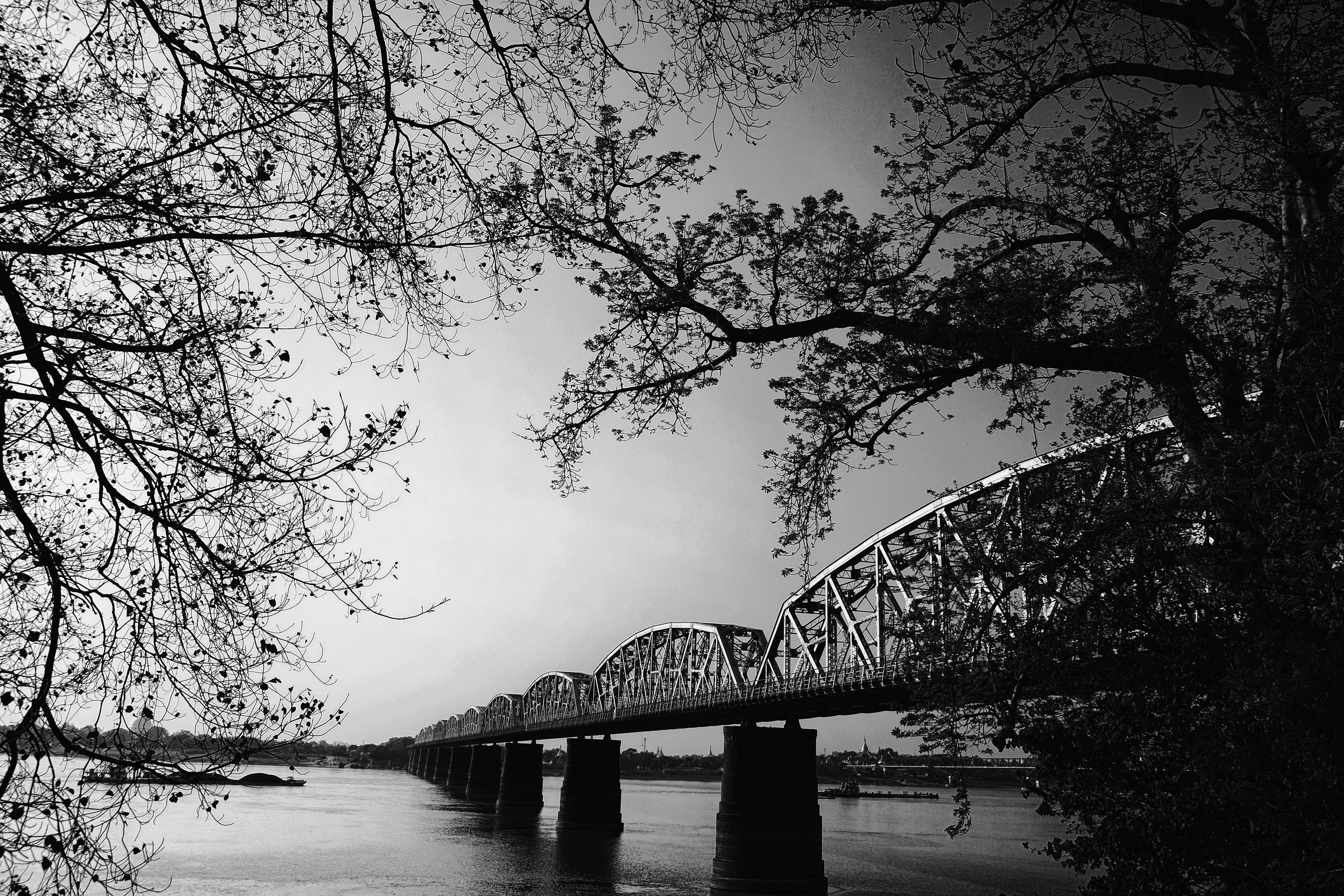 Black and Gray Scale Photo of Bridge