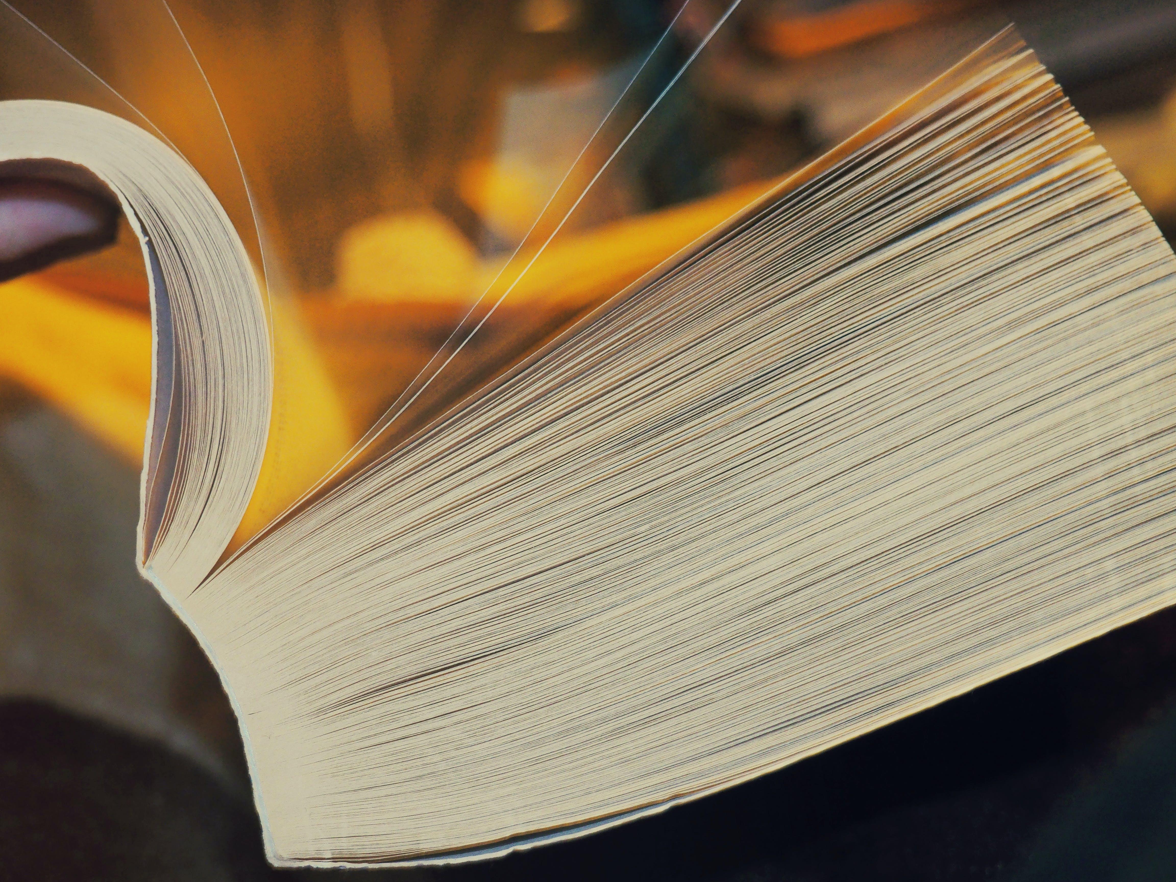 Photos gratuites de encyclopédie, gros plan, pages, pages de livre