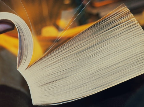 Free stock photo of book, book pages, pages, close-up