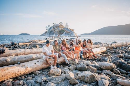 açık hava, ada, ahşap kütük içeren Ücretsiz stok fotoğraf