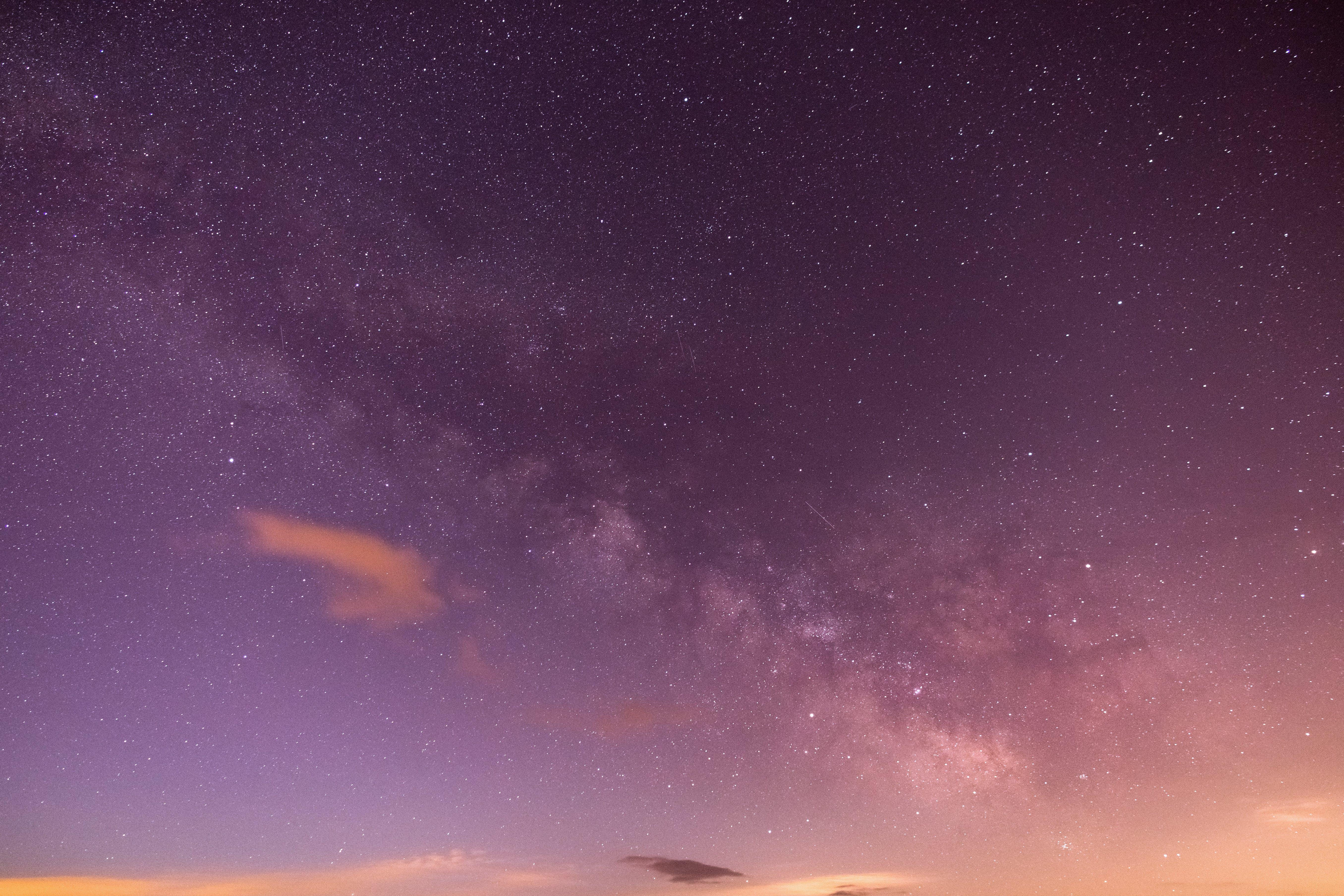 Purple and White Stars