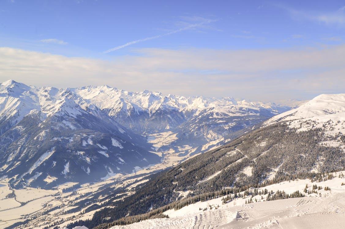 Альпийский, высокий, Высота