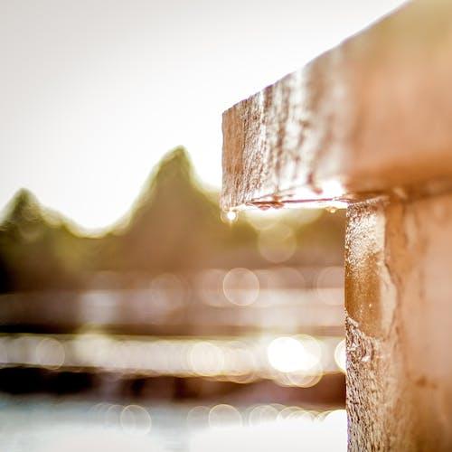 H2O, 棕色, 模糊, 濕 的 免费素材照片