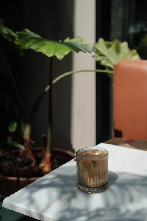 Základová fotografie zdarma na téma dřevo, flóra, h2o