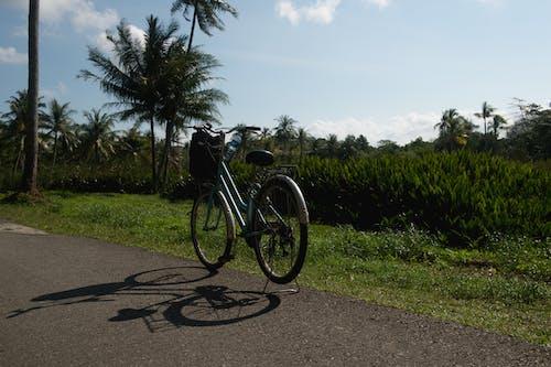 Free stock photo of bicycle, pulau, singapore