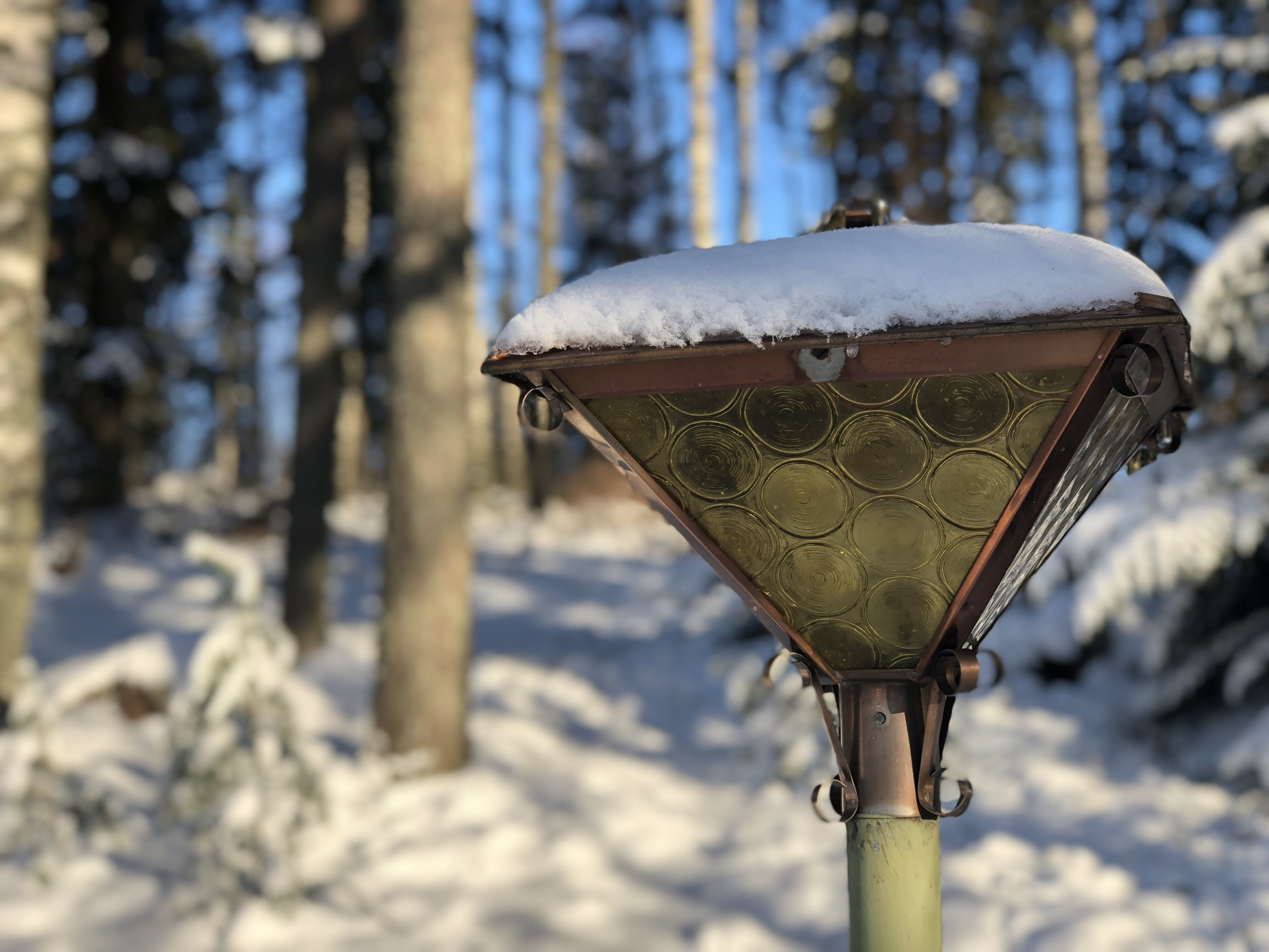 Free stock photo of snow, trees, lamp, forrest