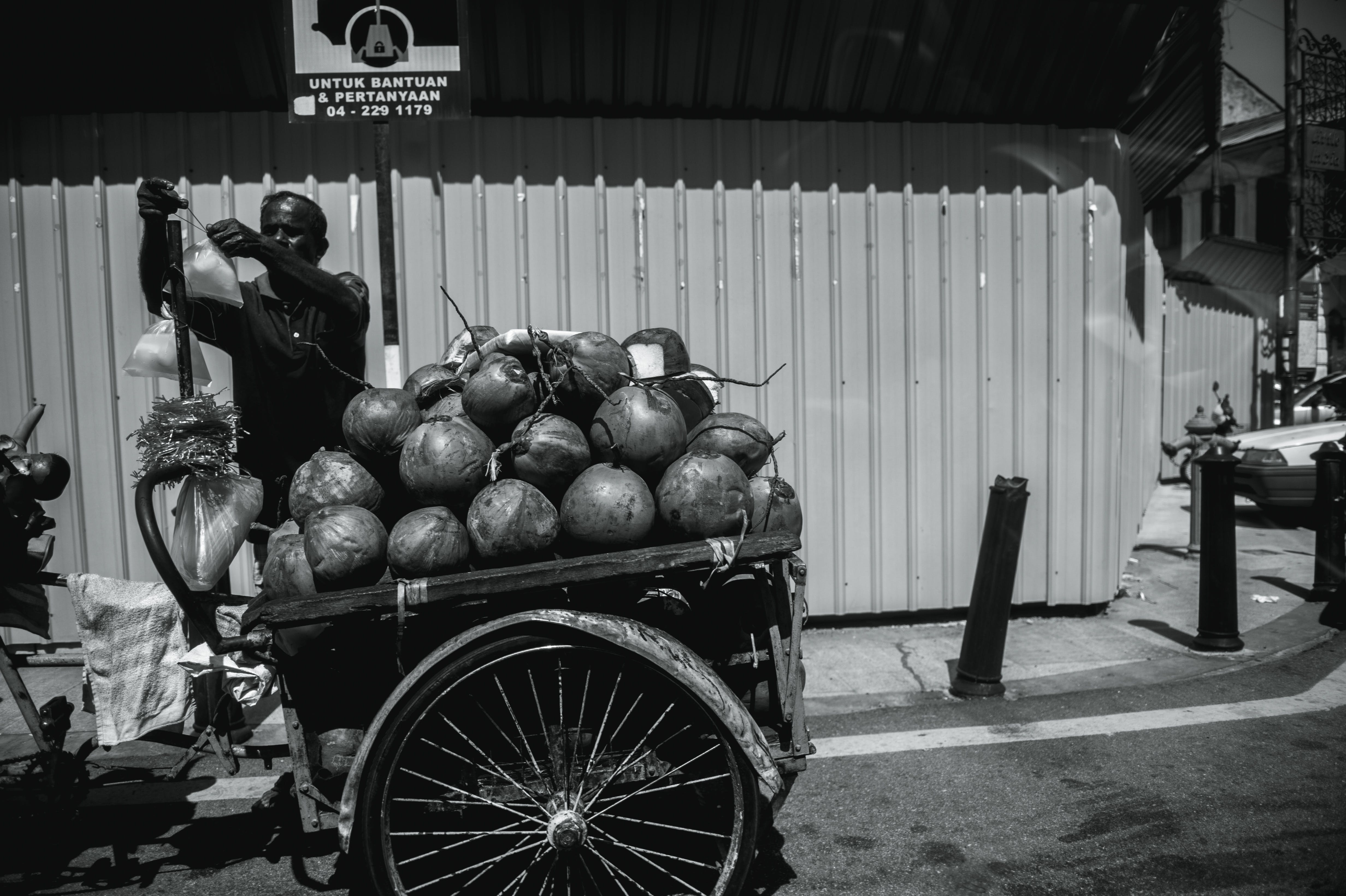 Free stock photo of street, boss, coconuts, indian
