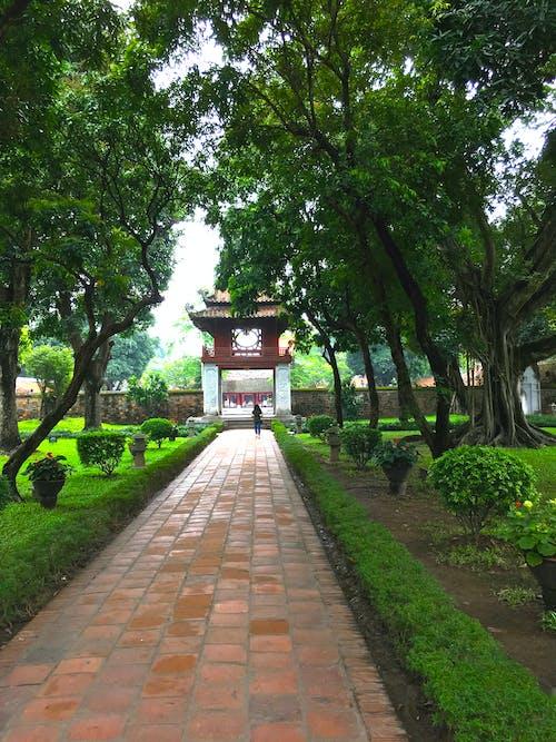 Free stock photo of quoc tu giam, temple of literature