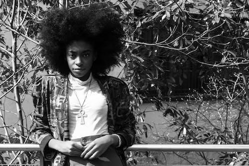 Gratis lagerfoto af afro, ansigtsudtryk, blade, dame