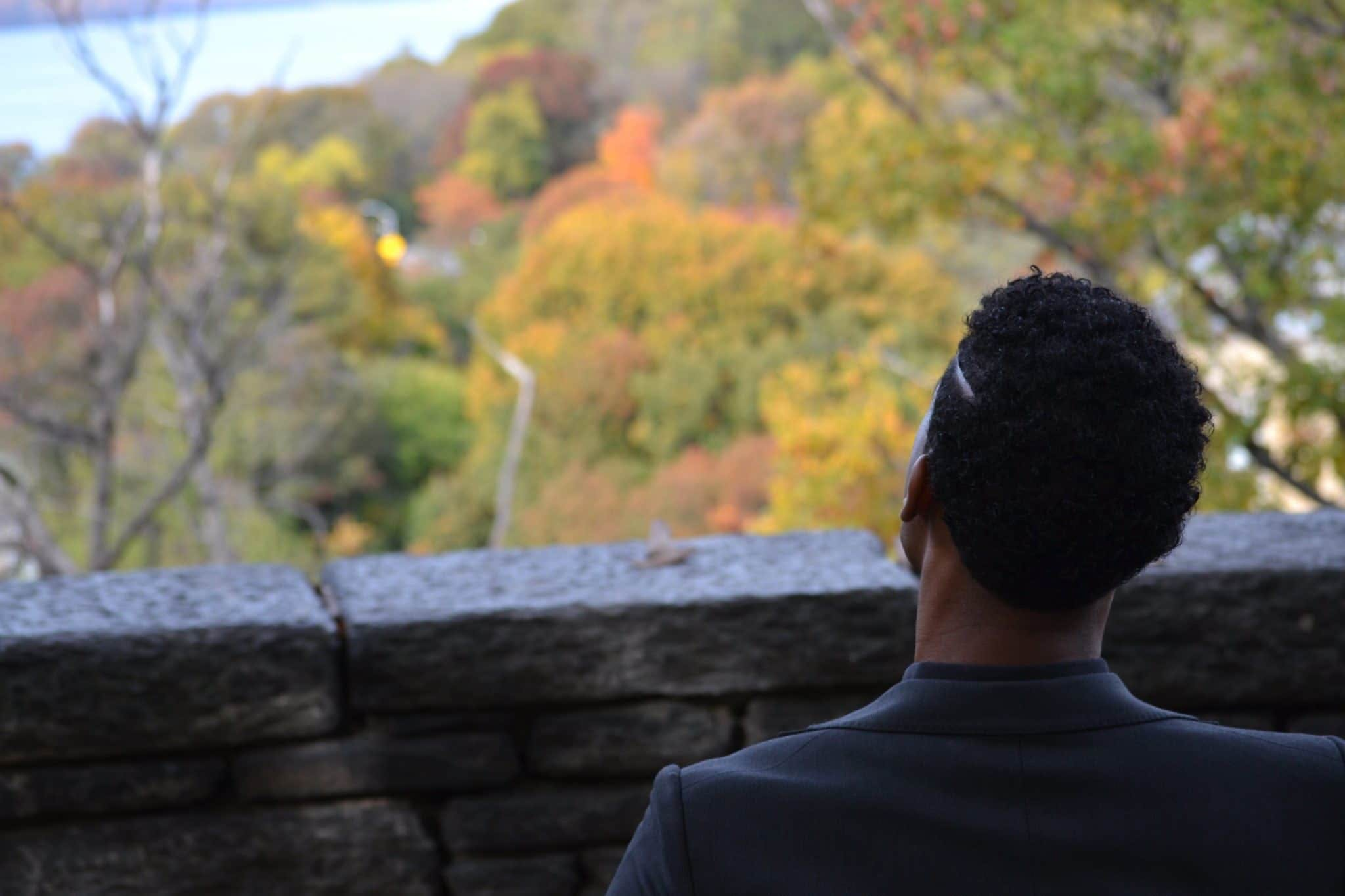 Back View of a Man Overlooking Autumn Treetops