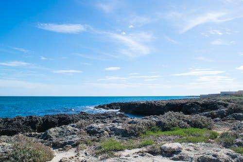 シースケープ, ビーチ, 休暇, 夏の無料の写真素材