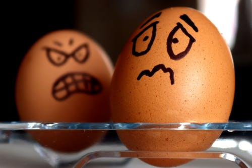 Free stock photo of eggs, expression, food