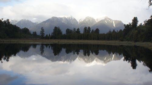 คลังภาพถ่ายฟรี ของ reflexions