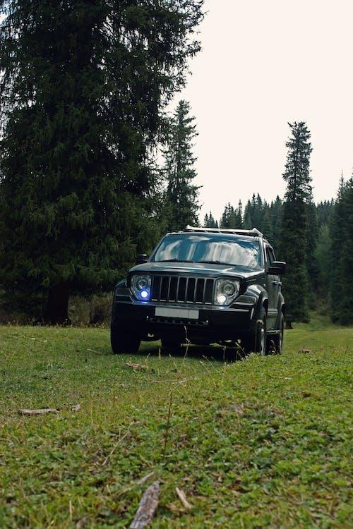 Black Jeep Parked on Lawn