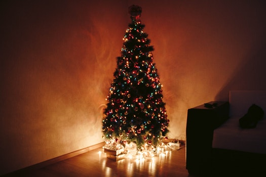 Photo of Christmas Tree During Night