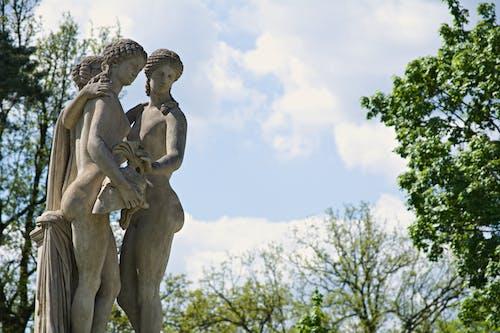 Безкоштовне стокове фото на тему «дерева, макрофотографія, небо, статуя»