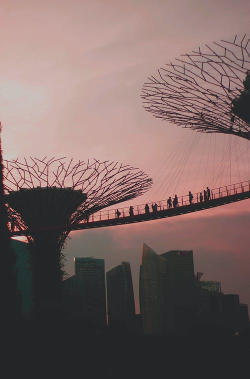 Silhouette of People on Bridge at Sunset