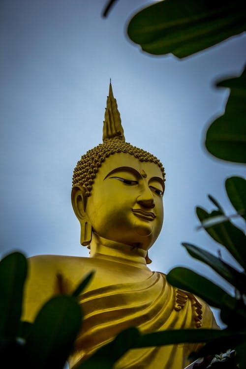 Estátua Do Buda Gautama