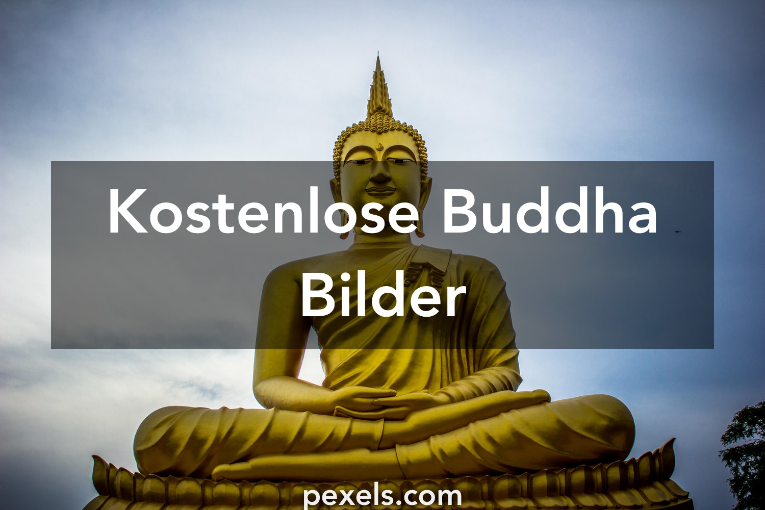 100 buddha fotos pexels kostenlose stock fotos. Black Bedroom Furniture Sets. Home Design Ideas