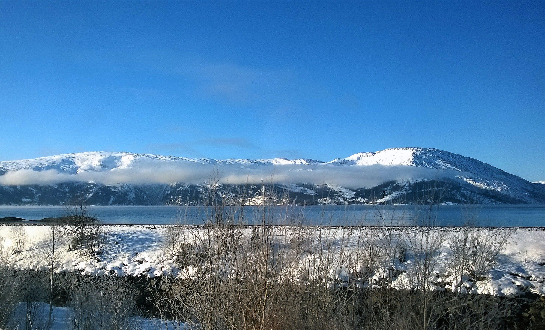 Darmowe zdjęcie z galerii z błękitne niebo, chmury, drzewa, góry