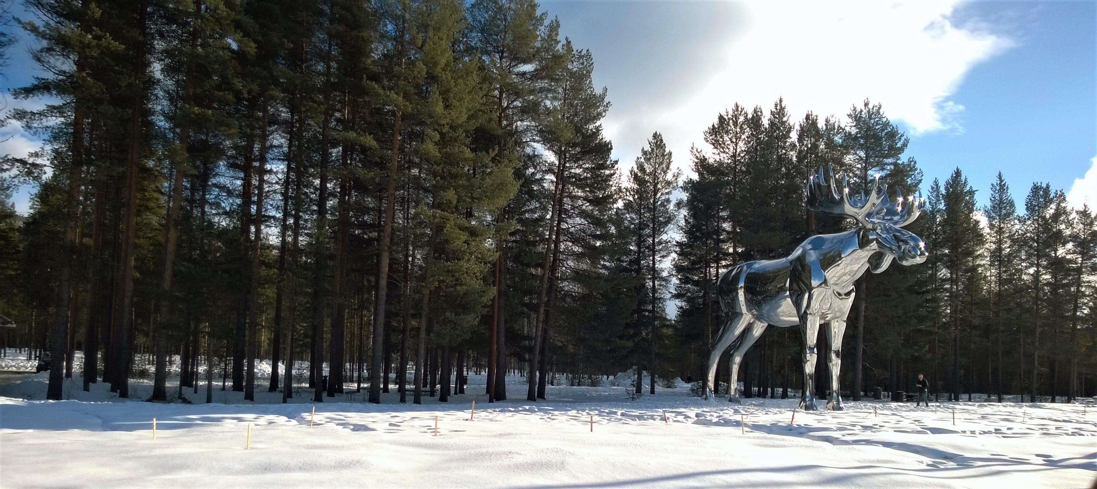 Silver Moose Statue Near Tree