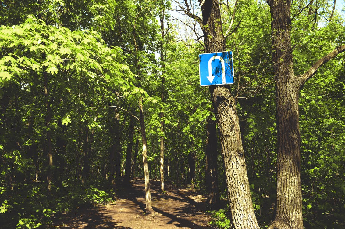 Free stock photo of forest path, reversal sign, turn sign