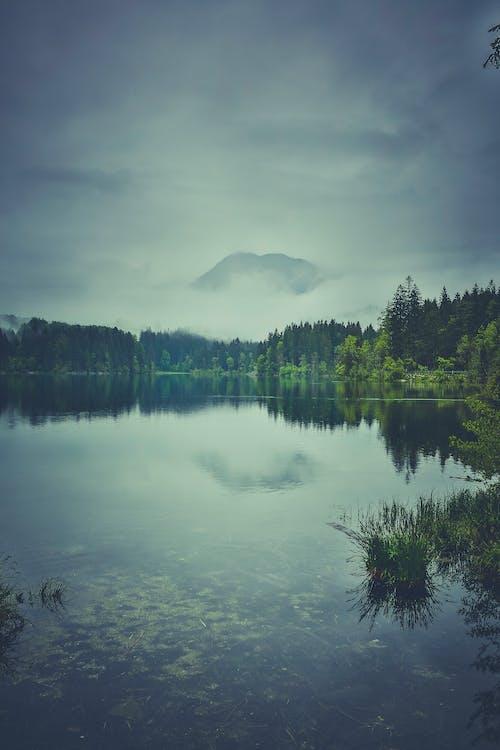 Základová fotografie zdarma na téma hora, krajina, mlha, příroda