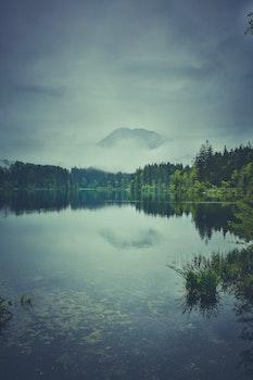 Kostenloses Stock Foto zu landschaft, natur, bäume, berg