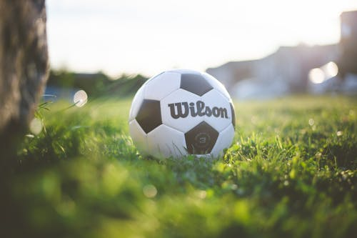 Black and White Ball on Green Grass Field