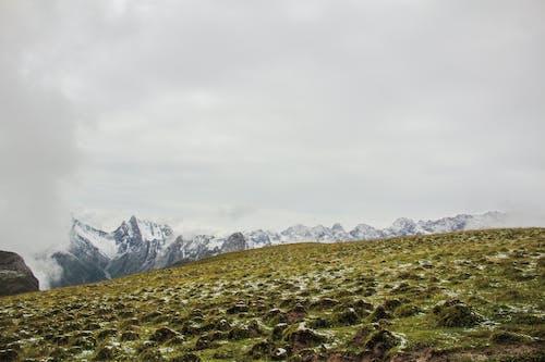 Ingyenes stockfotó a vadonba, domb, esés témában