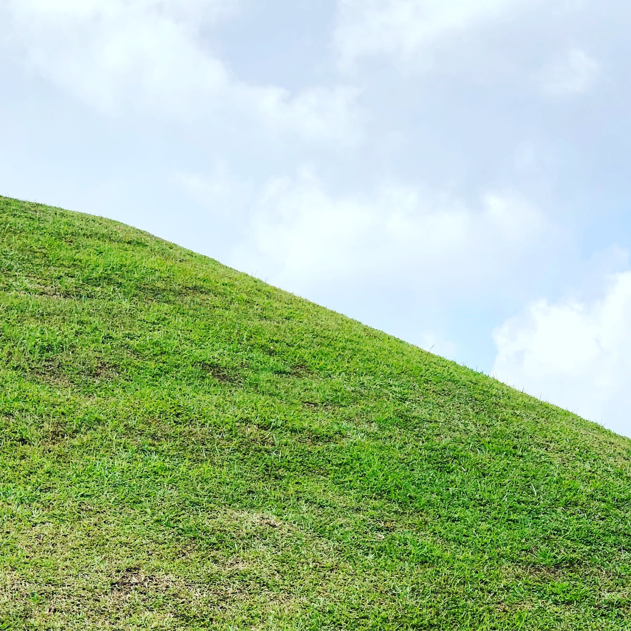 Free stock photo of blue, blue skies, blue sky, grass