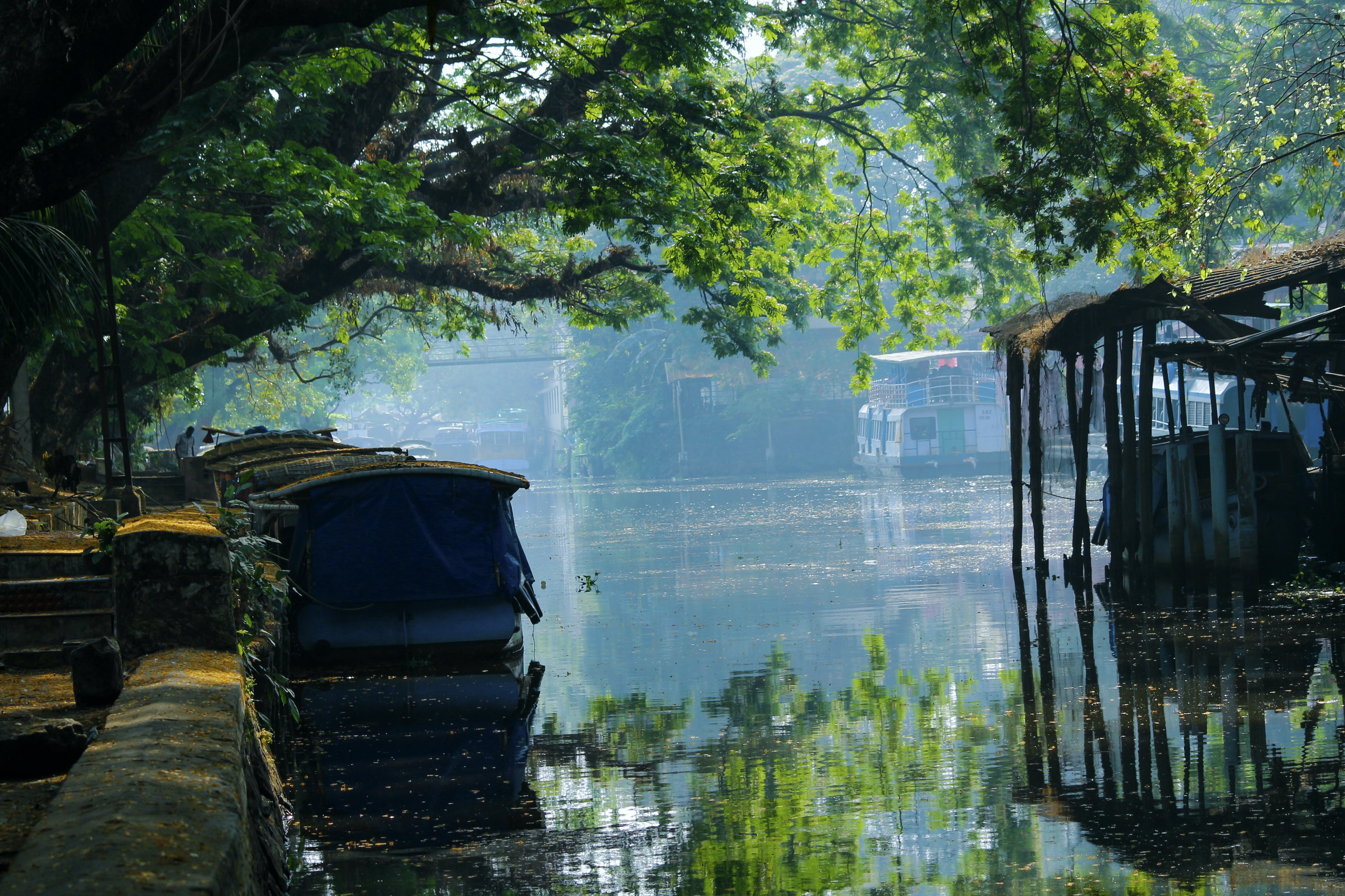 Free stock photo of alappuzha, alleppey, backwater, blue