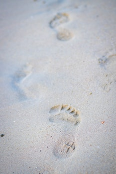 Photo of Foot Print on the Seashore