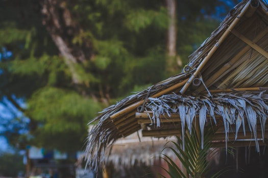 Selective Focus Photo of Brown Nipa Hut