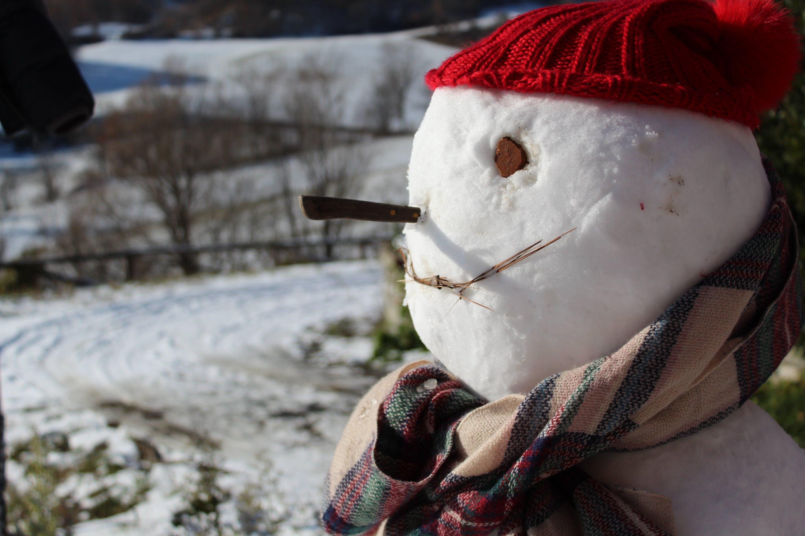 Free stock photo of snow, snow man, winter