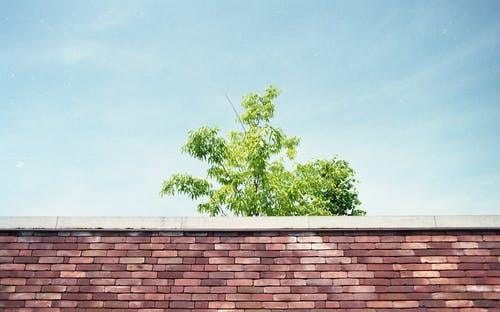 Gratis lagerfoto af himmel, minimalisme, symmetri, væg