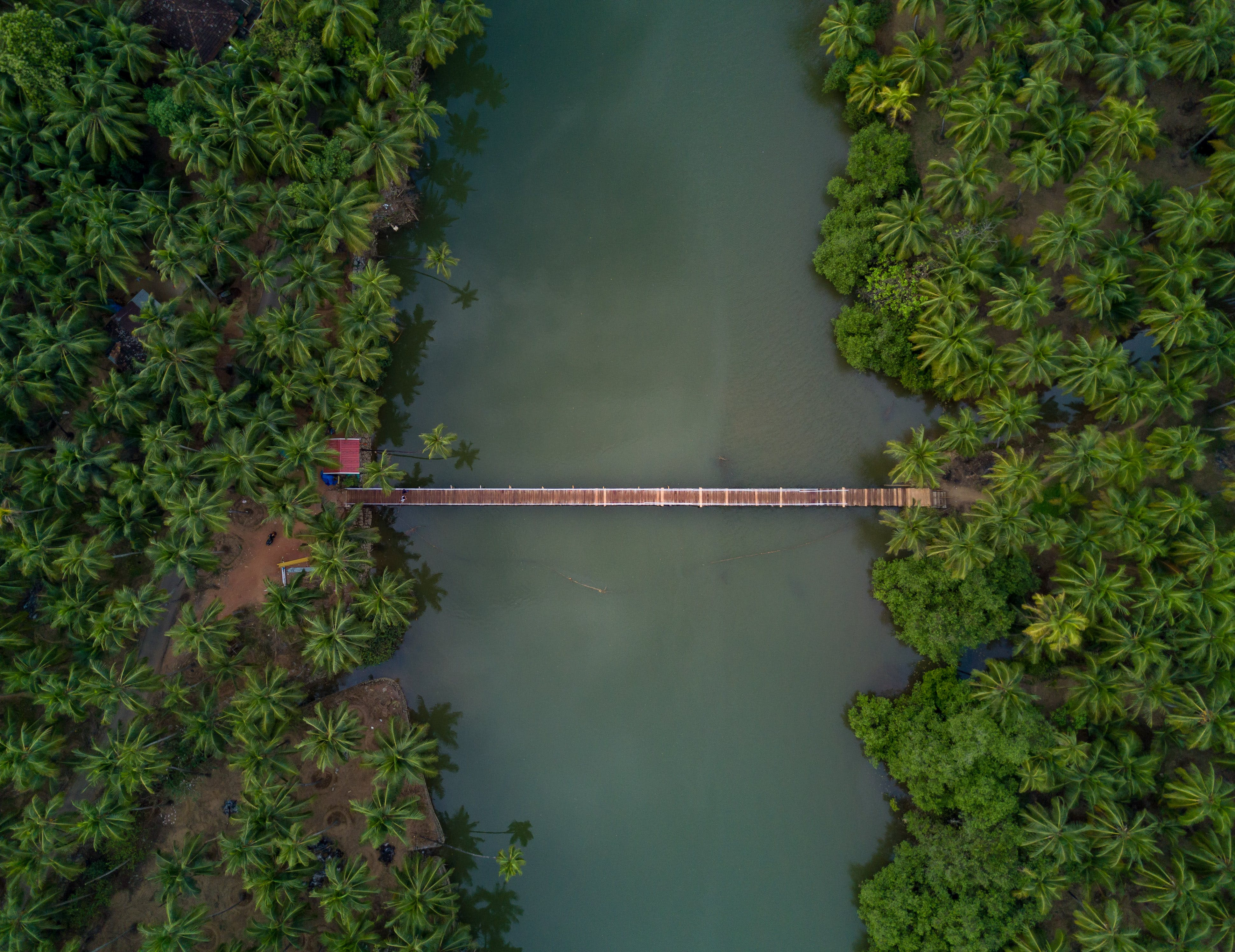 Aerial Photography of Brown Wooden Foot Bridge Connecting Two Forests