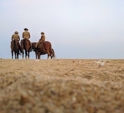 binici, çöl, erkekler, gökyüzü içeren Ücretsiz stok fotoğraf