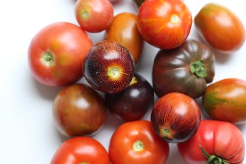 Orange Tomatoes on White Table