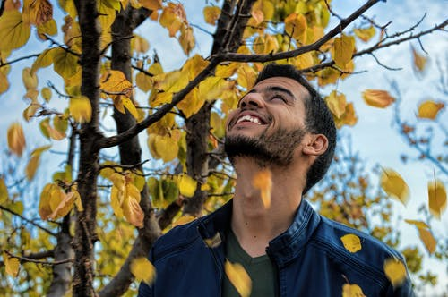 Photos gratuites de arbre, couleurs, homme, individu