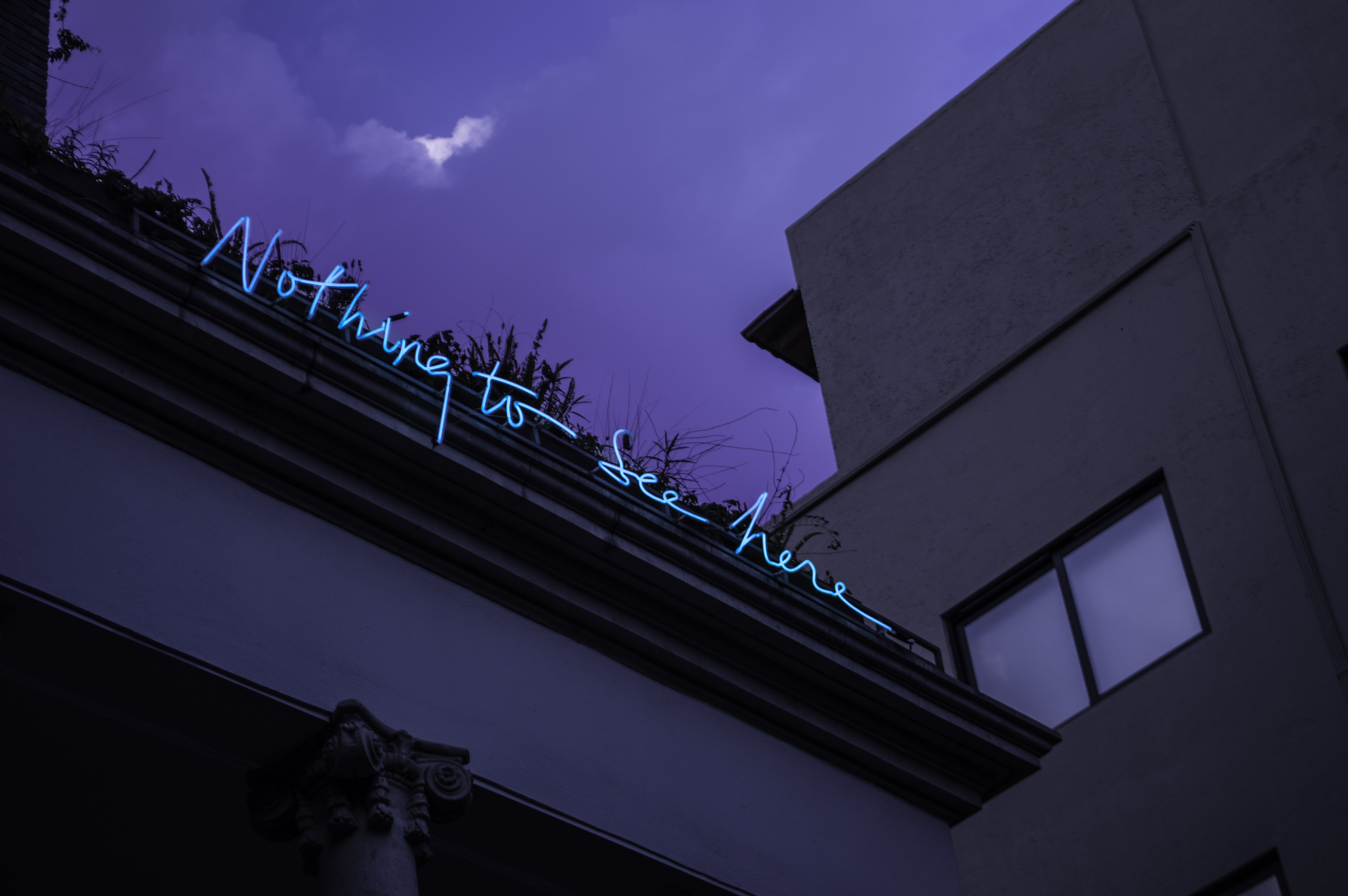 Nothing to See Here Neon Signage