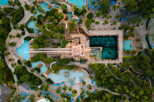 Aerial View of Swimming Pool Surrounded by Trees