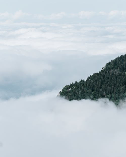 Základová fotografie zdarma na téma cestování, déšť, dřevo
