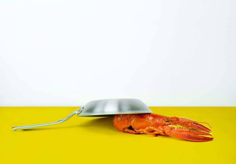 Gray Steel Cooking Pan Near Orange Lobster