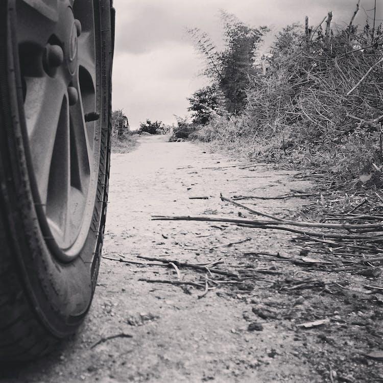 camí polsegós