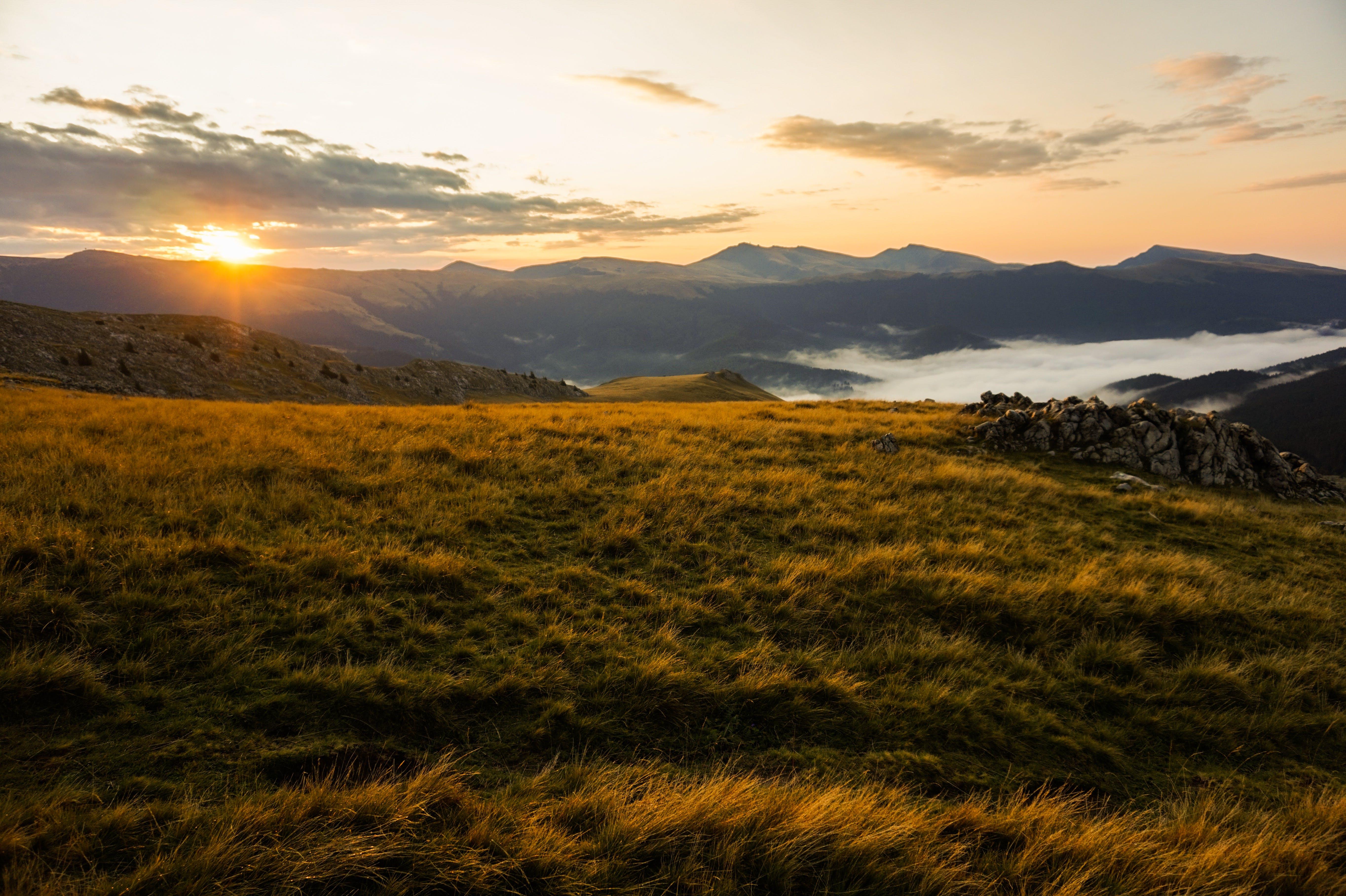 Gratis lagerfoto af aften, bane, bjerg, græs