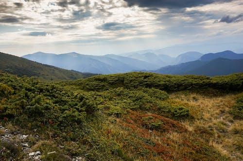 Foto stok gratis awan, gunung, indah, kabut